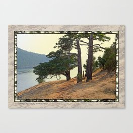 LOOKING WEST ALONG BURROWS PASS Canvas Print