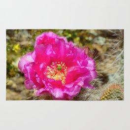 Hedgehog Cactus In Bloom Rug