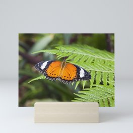 Orange Butterfly Mini Art Print