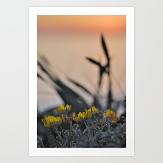 """""""Yellow flowers looking at sea sunset"""" Art Print"""