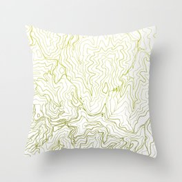 Secret places I - handmade green map Throw Pillow