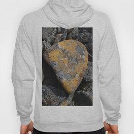 Tinted Rock Hoody