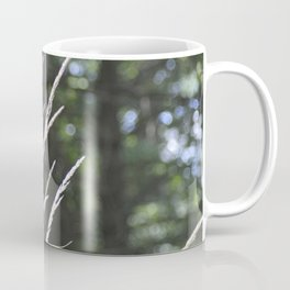 Ornamental Grasses & Blue Sky Orbs Coffee Mug
