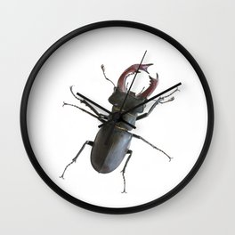 Stag beetle Wall Clock