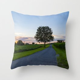 Tree Along Country Road in Pennsylvania Throw Pillow