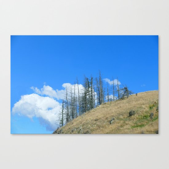 At The End Of The World Canvas Print