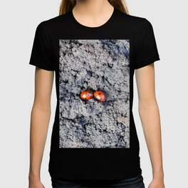 Lady and Gentleman Bug T-shirt