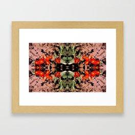 Kaleidescope Days Framed Art Print