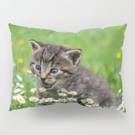 Kitty looking at flowers Pillow Sham
