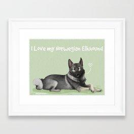 Norwegian Elkhound Framed Art Print