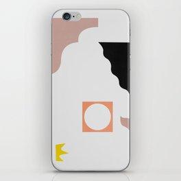 multi iPhone Skin