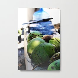 Coconut Fresh Metal Print