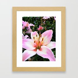 Lilyia Framed Art Print