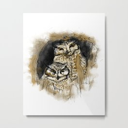 Owl#2 Metal Print