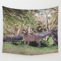 cheetah Wall Tapestries featuring Cheetah by Retro Love Photography
