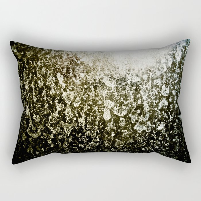 In The Parallels We Struggle Rectangular Pillow