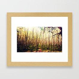 Irish Trees Framed Art Print