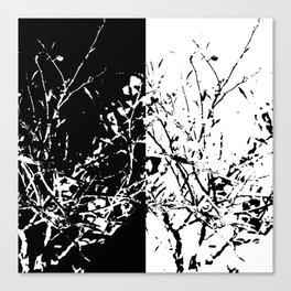 Yin Yang Bush Canvas Print