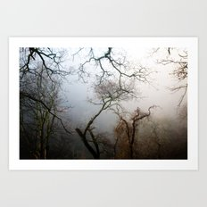 Misty Morning in Scotland Art Print