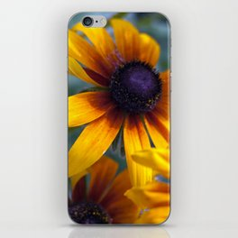 Summer's things - rudbeckia 20 iPhone Skin