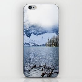 Wild Winter iPhone Skin