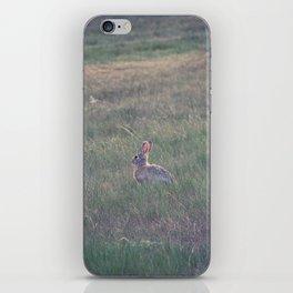 Farm Wabbit iPhone Skin