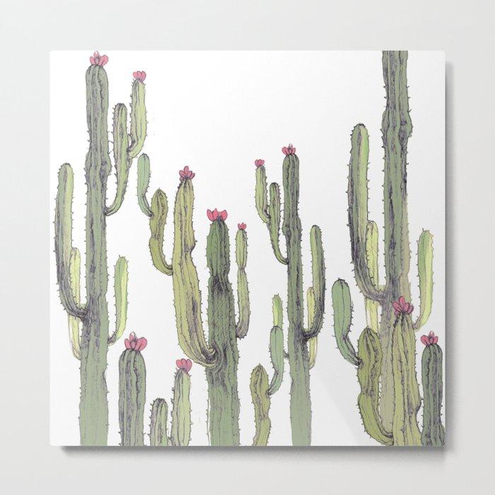 cactus in nature Metal Print