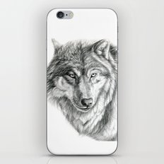 Wolf portrait G031 iPhone & iPod Skin