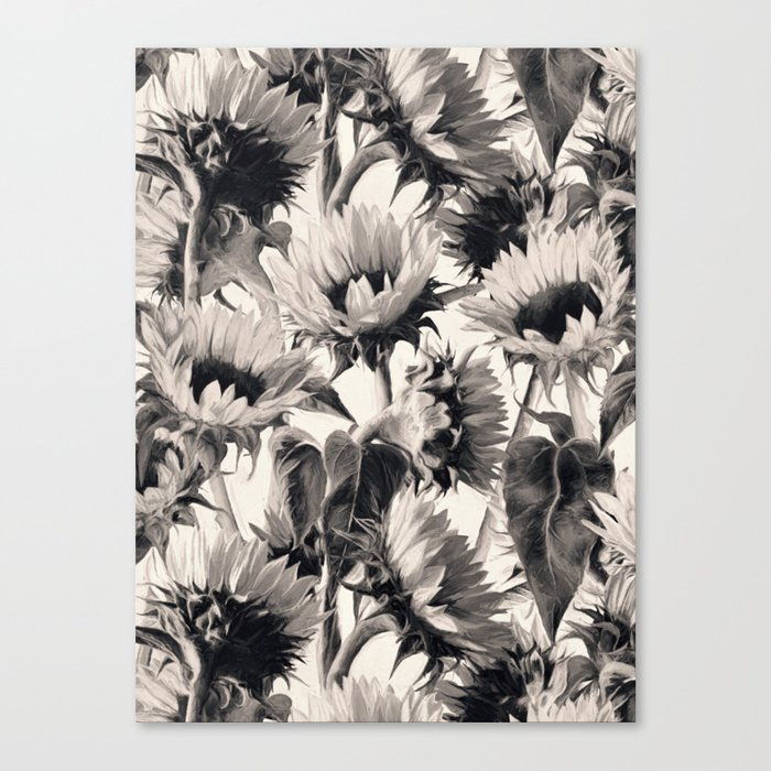 Sunflowers in Soft Sepia Canvas Print