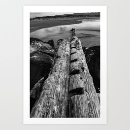 Surfers and Driftwood Art Print
