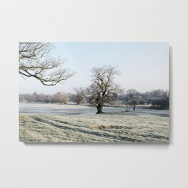 Trees in a frost covered field at sunrise. Norfolk, UK. Metal Print