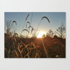Autumn Fields 1 Canvas Print