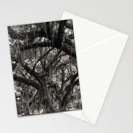 Live Oaks with Spanish Moss, Georgia Stationery Cards