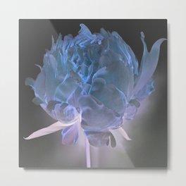 Blue Peony Metal Print