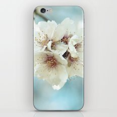 Blue softness iPhone & iPod Skin