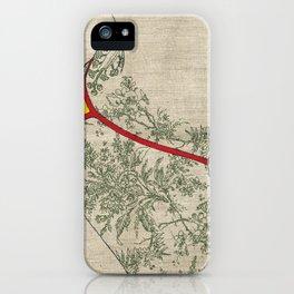a.. iPhone Case