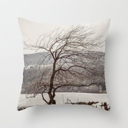 Many Years Throw Pillow