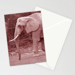Elephant Elegance Stationery Cards