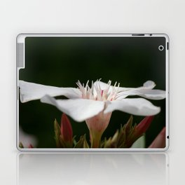 broken Flowers Laptop & iPad Skin