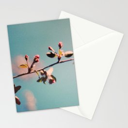 dreaming 3 Stationery Cards