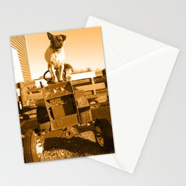 My son and dog on the farm Stationery Cards
