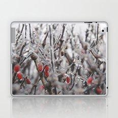Ice Berries Laptop & iPad Skin