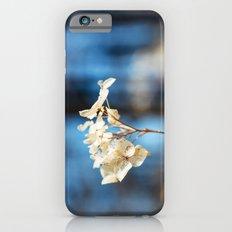 Summer's Ghost I iPhone 6s Slim Case