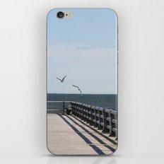 Playful iPhone & iPod Skin