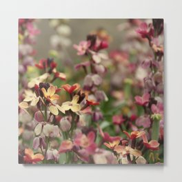 colorful frowers Metal Print