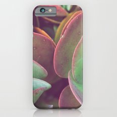 Jade + Pink iPhone 6s Slim Case