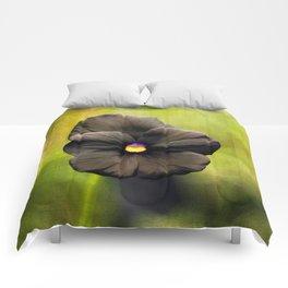 Standing Alone Comforters