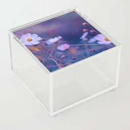 Cosmos Acrylic Box