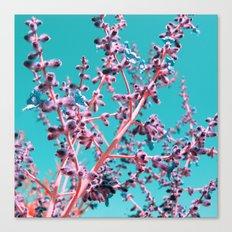 wild beauty Canvas Print