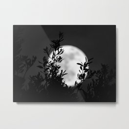 Full Moon Leaves Metal Print